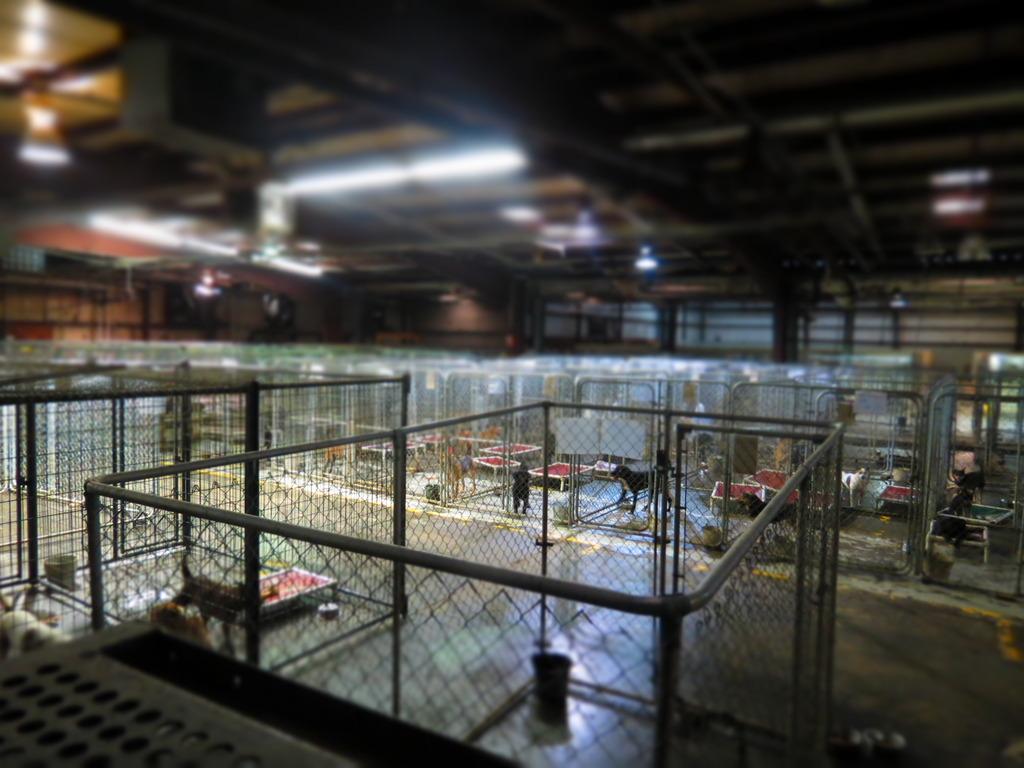 inside the facility