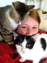 Kristin: part awesome volunteer part cat lady