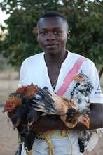 David and his chickens