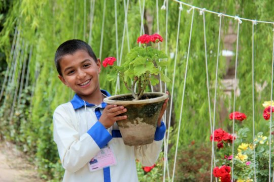 Help Afghan Boys Trade Guns for Books