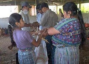 Build a Sustainable Community in Rural Guatemala