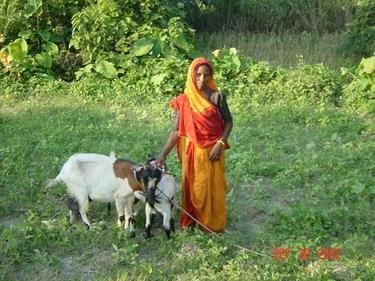 Women in India Protect Land & Foster Self-Reliance