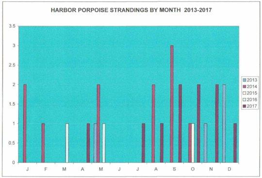 Harbor porpoise strandings by month, 2013 - 2017