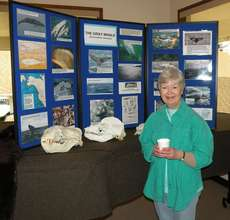 Sandy with skulls that will be in the Whale Center