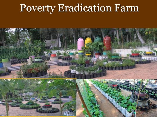 Student Integrated Poverty Eradication Farm