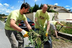 Nase Mesto - garden cleaning