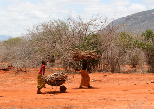 Masai girls work very hard