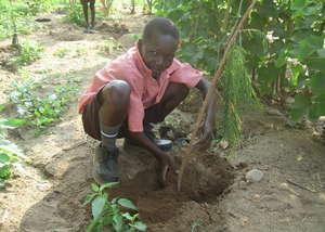 2500 CHILDREN PLANTING TREES