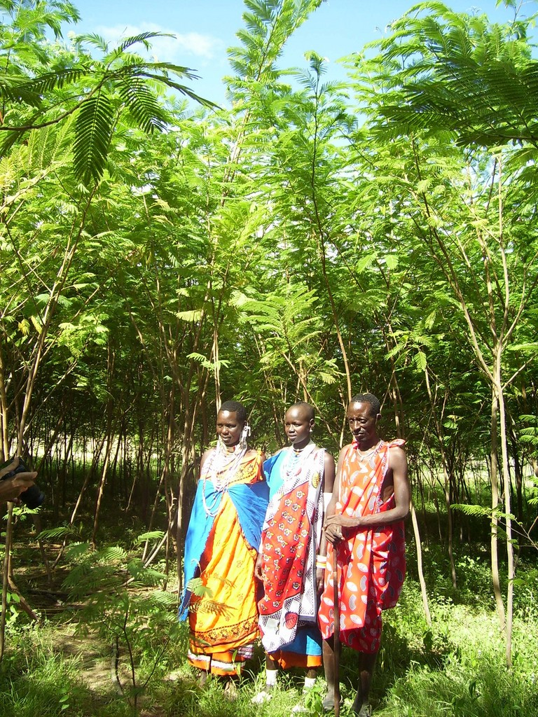 Masai women inspire girls (trees are 1 year old)