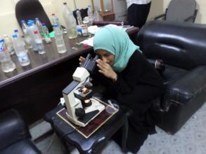 Doa'a examines blood samples of dengue patients