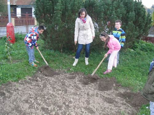 Mission of the Young and planting of the trees.