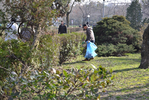 Cleaning the park near the shelter