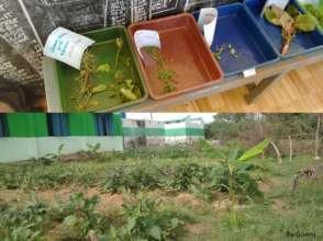 Kids worked on identifying herbal plants