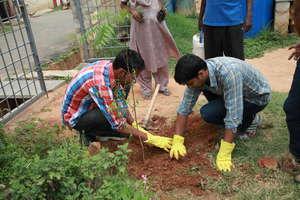 Corporate Volunteers planting nutritious saplings