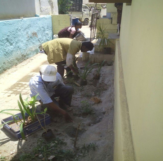 Greening the centres