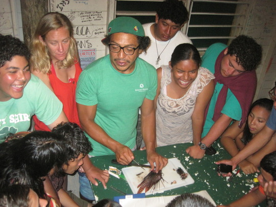 Lionfish dissection in Marine Ecology Course