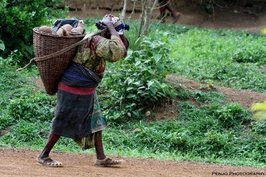 Domestic Violence Prevention Initiative Cameroon