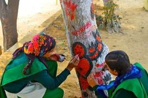 'Paint the tree' Campaign