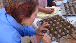 Mayama mom planting