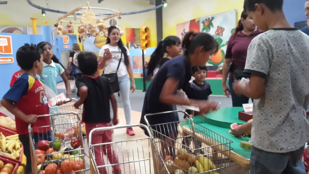 Summer activities at the museum for children