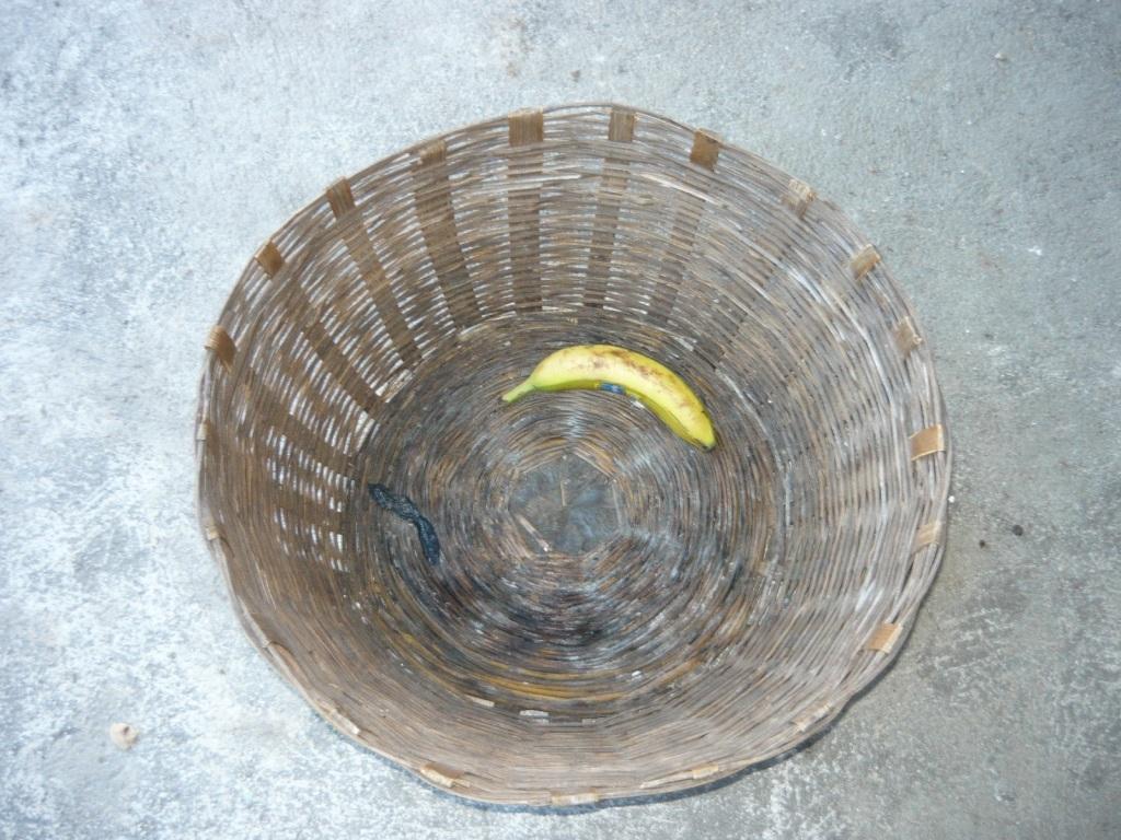No more empty fruit baskets