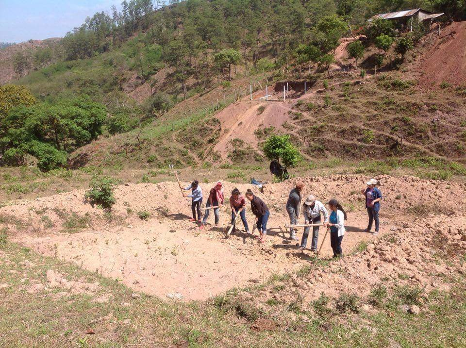 Digging a Plan Tilapia pool in Honduras