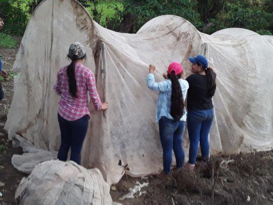 Plan Huerto in Honduras