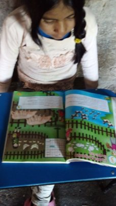 Learning from home in Peru