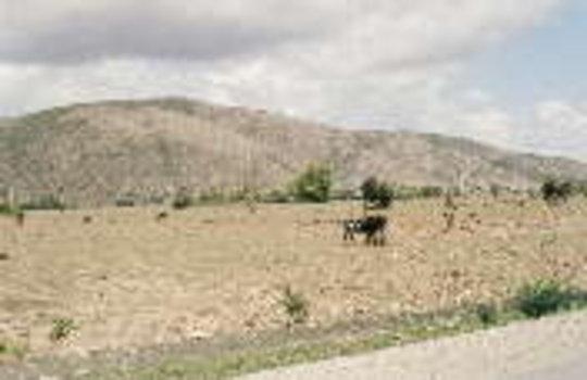 Haiti: Peasants for the Planet