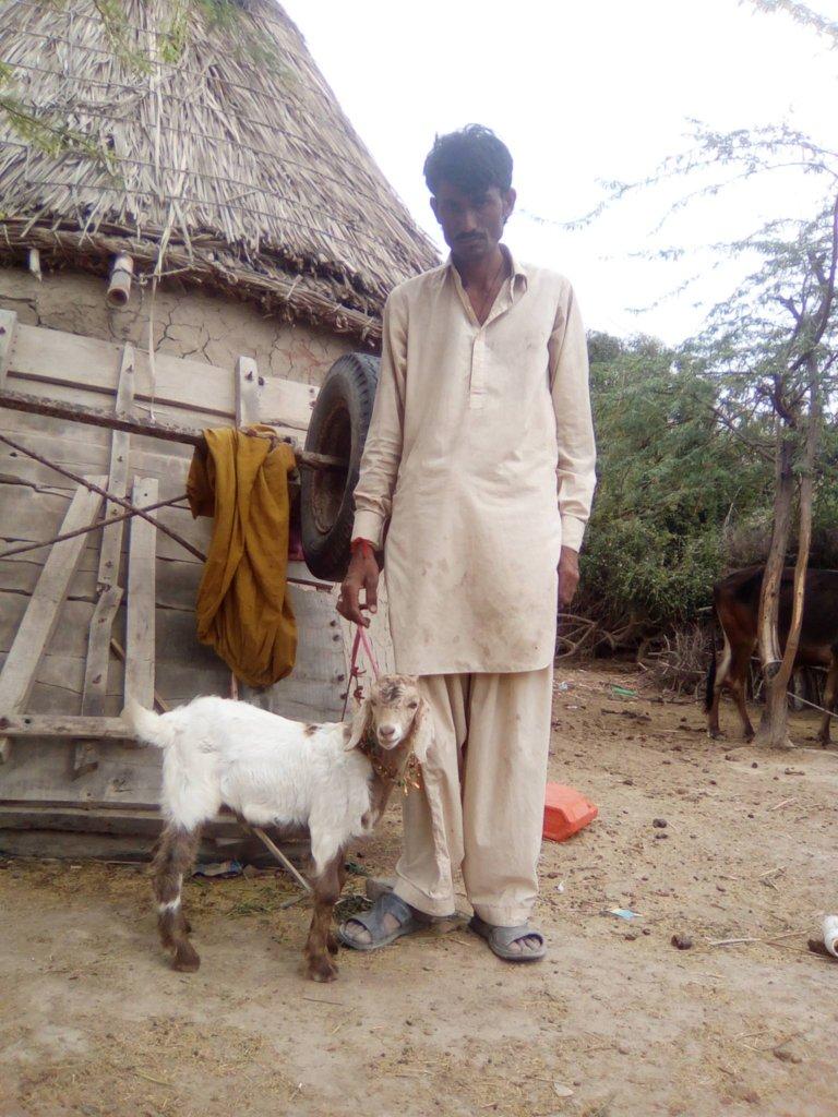 Mangal, PEP graduate with his lamb.