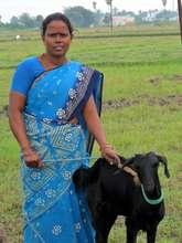 Mrs. K. Meena