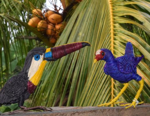 Channel-billed toucan and purple gallinule models