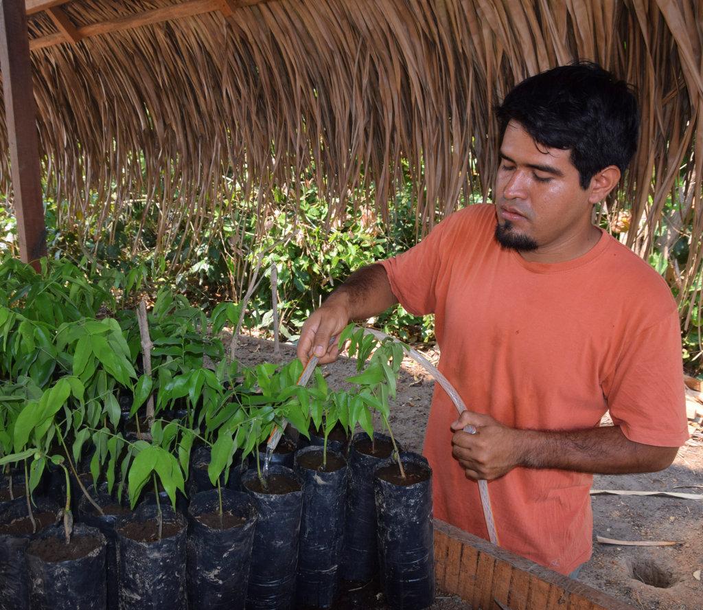 Watering seedlings at Camino Verde nursery