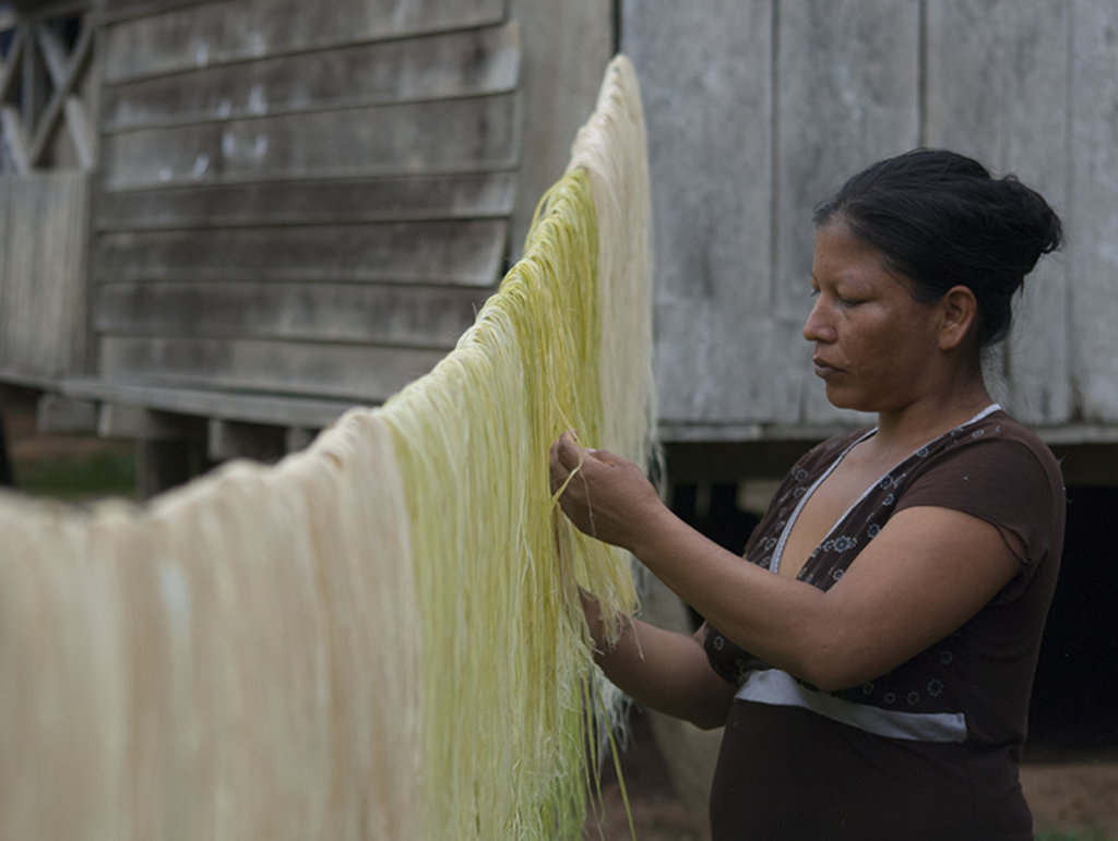 Liria drying chambira fiber before dyeing it
