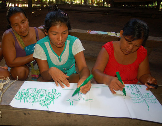 Artisans drawing chambira palms at workshop.