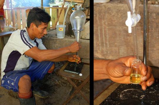 Distilling aromatic rosewood oil in Brillo Nuevo