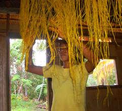 Ocaina artisan hanging chambira palm fiber to dry