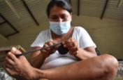 Grow Amazon artisan income & Peru rainforest trees