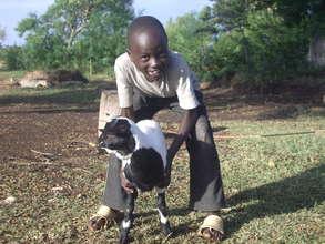 his goat