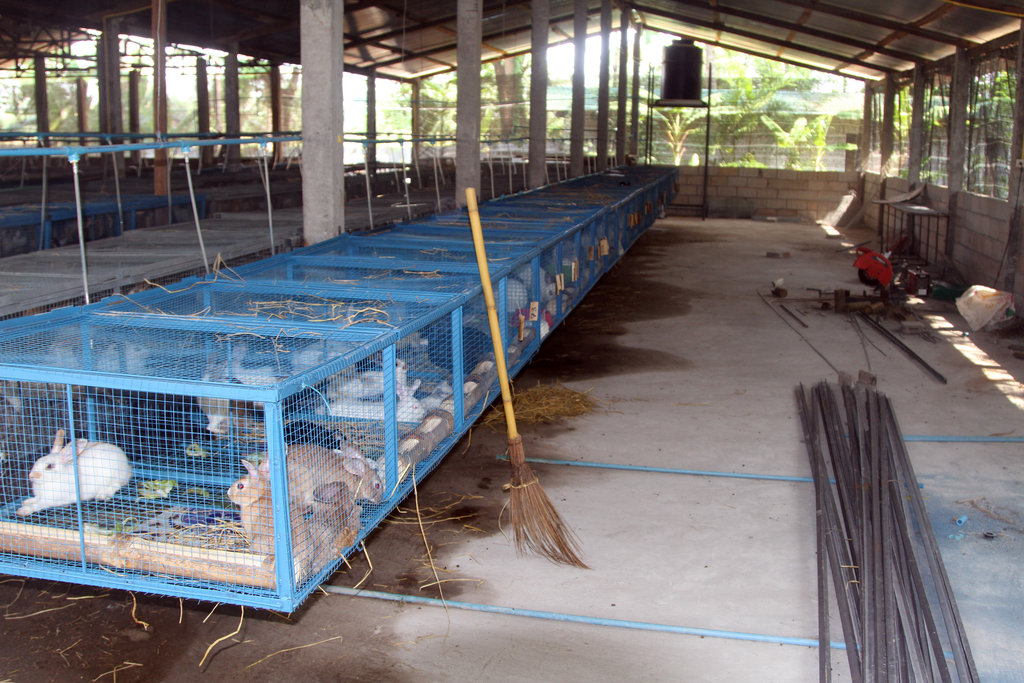 Construction of new barn