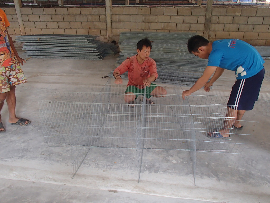 Assembling the rabbit cages
