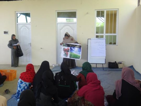 Strawberry Farming for 500 Afghan Women