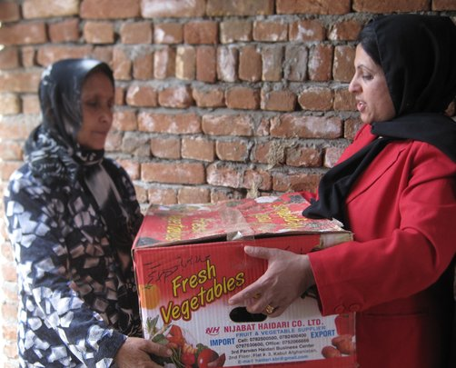 Distributing strawberry runners in recycled boxes