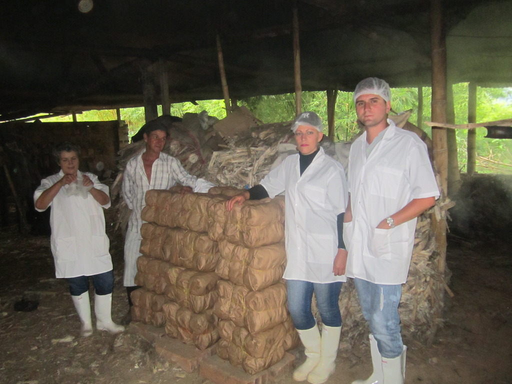 Panela packed and ready to be commercialized