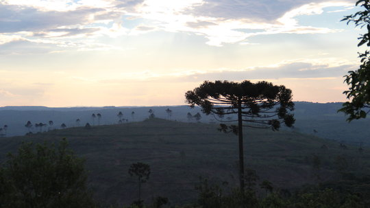 View from outside the Marrecas Indigenous Reserve