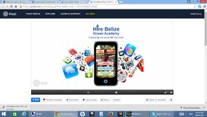 Hire Belize - students' solution for unemployment
