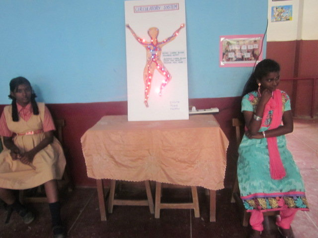 Circulatory System project done by Vi Std students