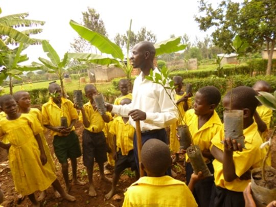 Fruit and Shade Trees for Children in 10 Schools