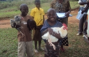 Chickens for 100 Orphans in Rural Buwunga