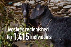 HHC restored livestock and livelihood to victims